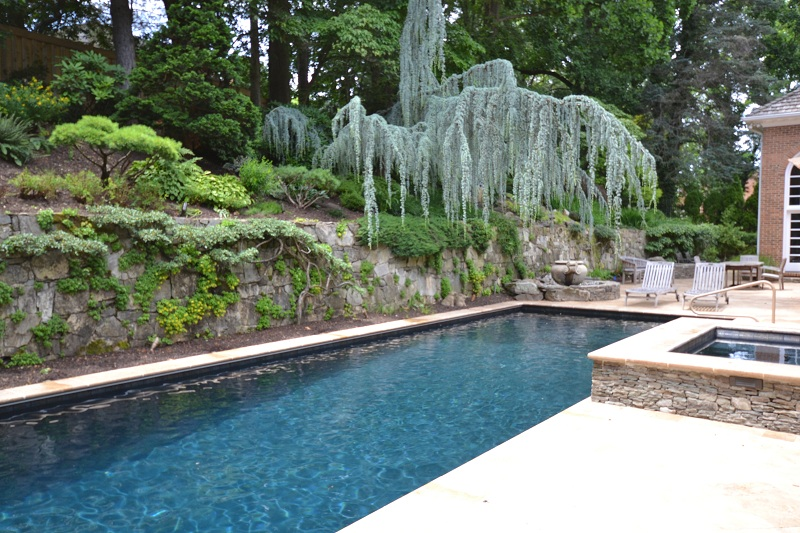 Swimming Pool On Pinterest Virginia Town And Country And Pools