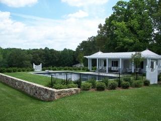 Reverse Beam, Albemarle Virginia Pool